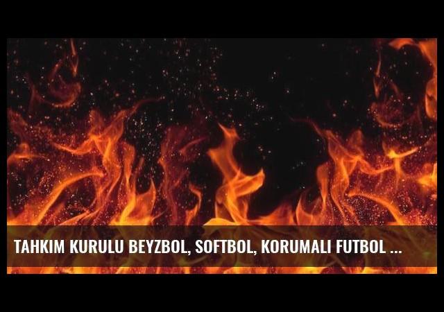Tahkim Kurulu Beyzbol, Softbol, Korumalı Futbol ve Ragbi Federasyonu Genel Kurulu'nu erteledi