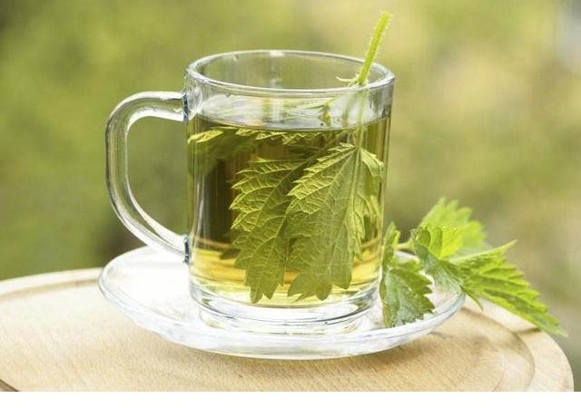 Isırgan çayının süper faydaları