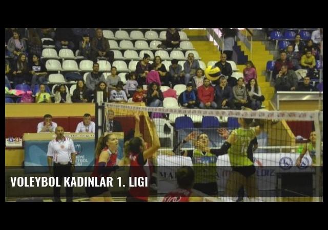 Voleybol Kadınlar 1. Ligi