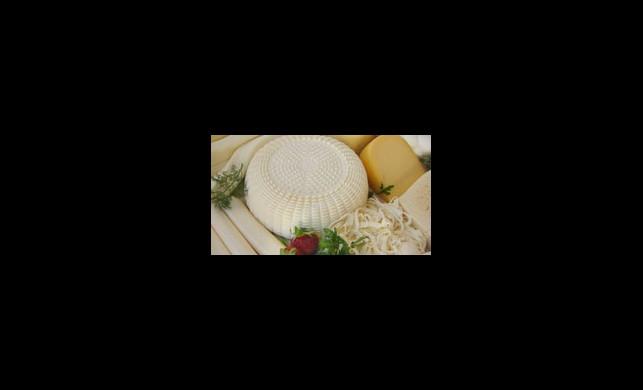 Hangi Peynir Kaç Kalori
