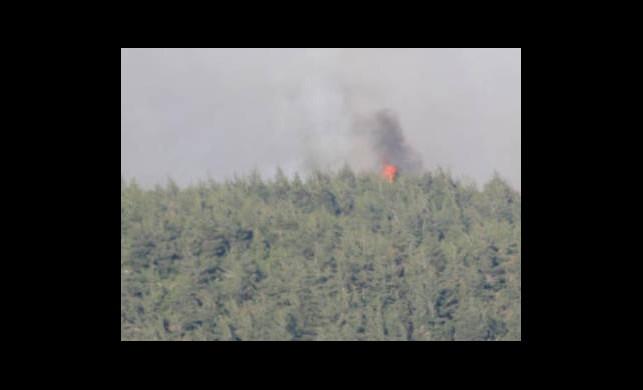 Suriye'deki Orman Yangını Türkiye'ye Sıçradı