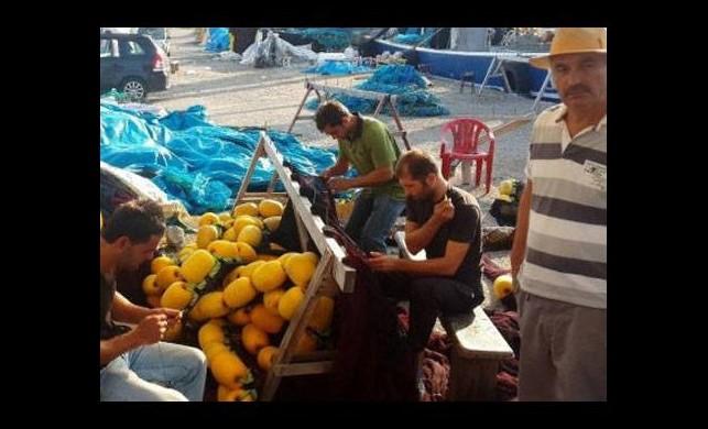 Balıkçılardan ucuz balık müjdesi