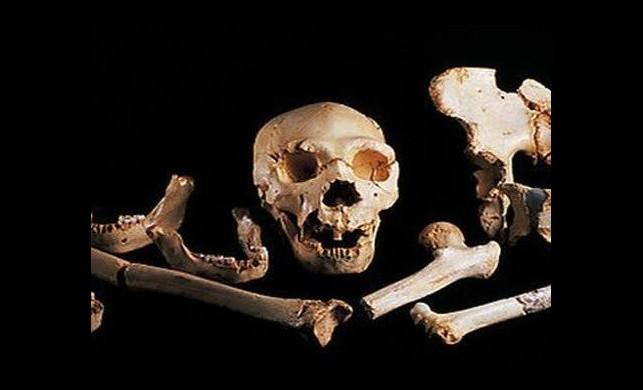 İnsanoğlunun 400 Bin Yıllık DNA'sı Bulundu