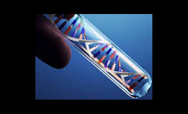 1 Saatte DNA Testi!