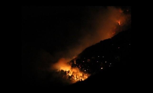 Uludağ'da Korkutan Yangın