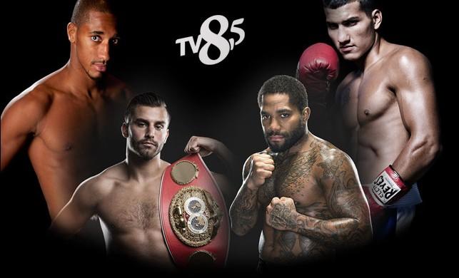 TV8, 5'ta boks şöleni