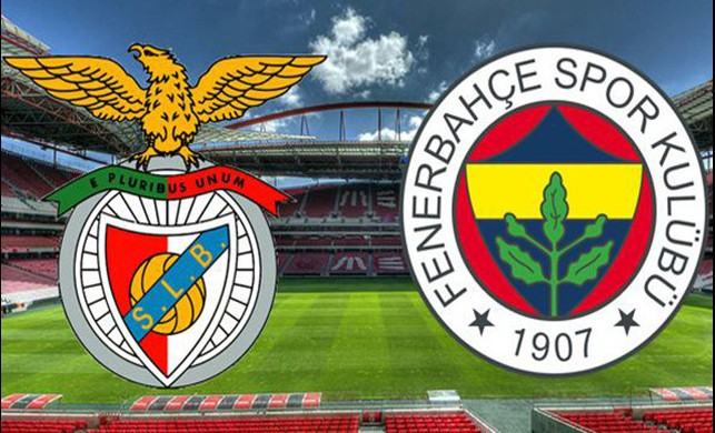 Fenerbahçe'de Andre Ayew ve Mehmet Topal'ın durumları kritik
