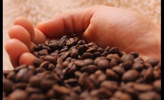Kahvenin Dünü Bugünü