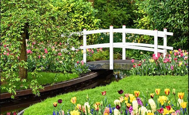 Dünyanın En Büyük Çiçek Bahçesi: Keukenhof