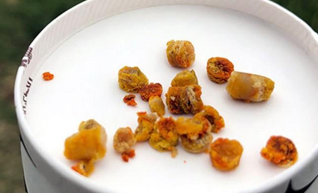 Arı ekmeği, sentetik vitaminlerin yerini almaya başladı