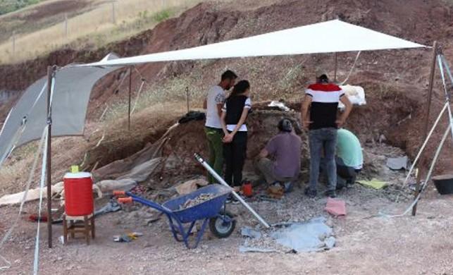 Çankırı'da 3 bin 500 fosil çıkarıldı!