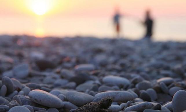 Caretta caretta yavrularını vatandaşlar denize ulaştırdı