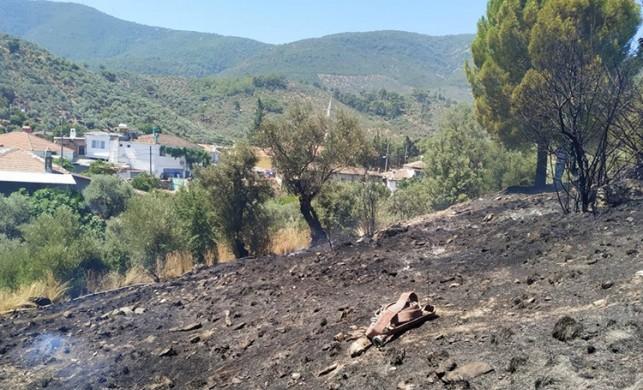 Muğla'da makilik ve tarım arazisinde yangın