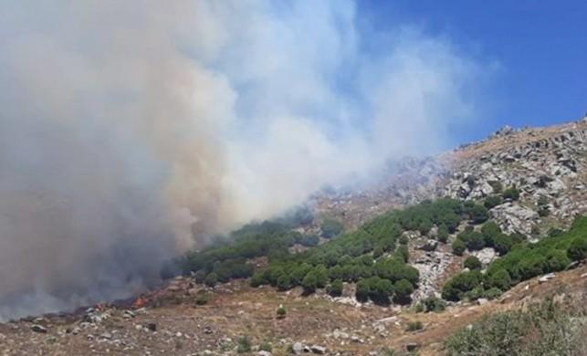 Marmara Adası'ndaki yangın yeniden başladı!
