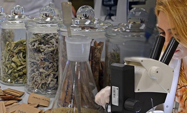 Böcek parçaları, kaş ve kirpik... Bitki çaylarında korkutan laboratuvar sonuçları