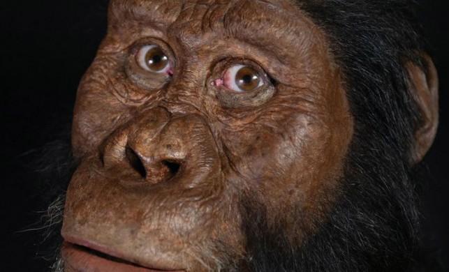 Yıllar süren araştırma sonuçlandı: İşte ilk insanın görüntüsü