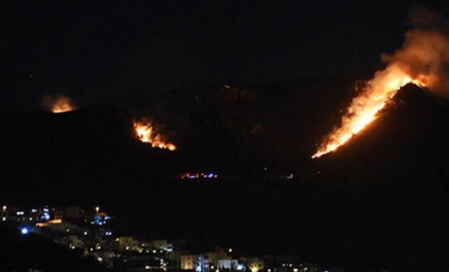 Bodrum'da dün geceden beri alevler yükseliyordu! Yangın kontrol altına alındı