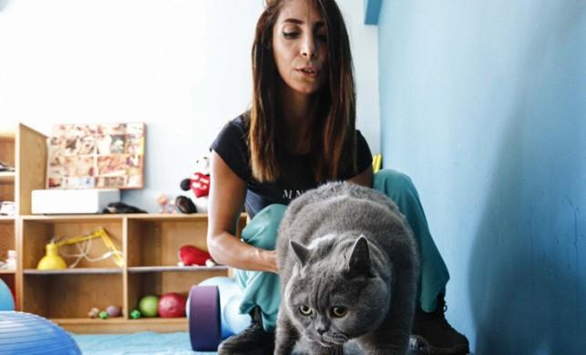 13 kiloluk kedi, koşu bandı ve pilatesle 4.5 kilo verdi!