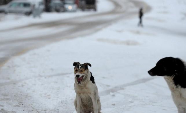 Uludağ'daki Oteller Bölgesi'nde mevsimin ilk kar yağışı etkili oldu