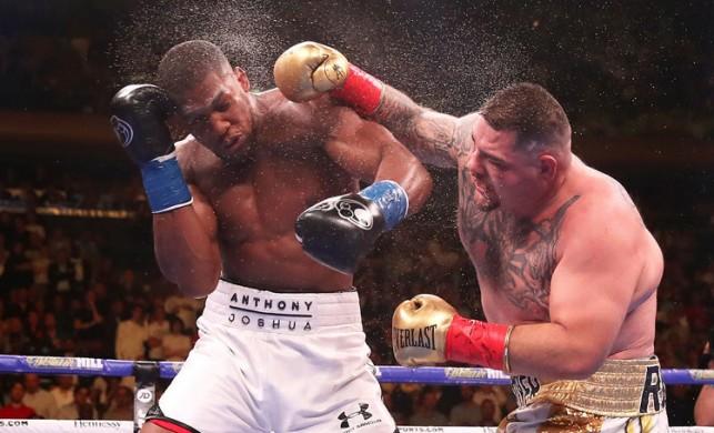 Anthony Joshua Andy Ruiz rövanş boks maçı ne zaman saat kaçta hangi kanalda?