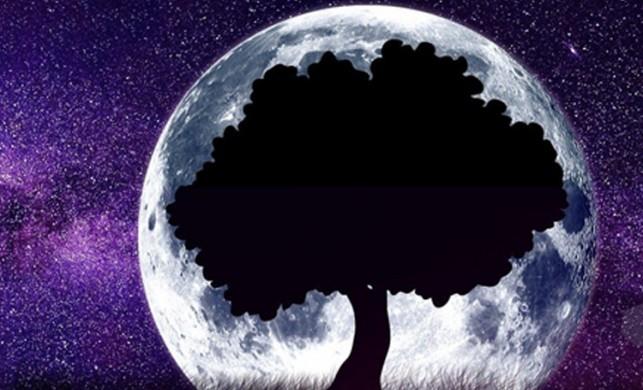 Şubat Ayında gökyüzünde neler oluyor?