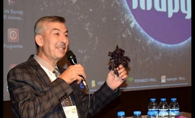 Koronavirüs salgını sonrası reyhan satışlarında patlama yaşandı