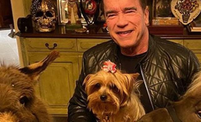 Arnold Schwarzenegger hayranlarına seslendi!