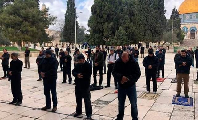 Mescid-i Aksa'da korona virüs nedeniyle dua edildi