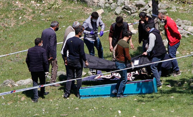 Ankara'da ayı saldırısı! 60 yaşındaki kadın öldü