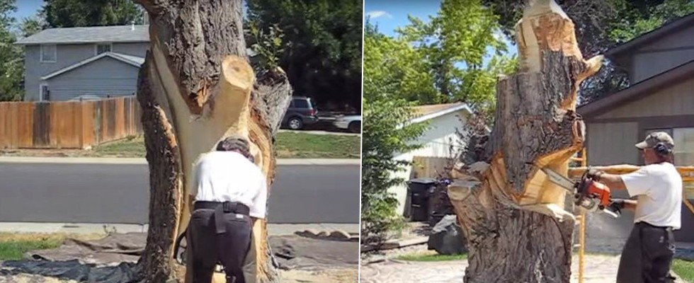 Evinin önündeki kurumuş ağacı bakın neye dönüştürdü