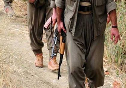 36 Milletten PKK'lı Var