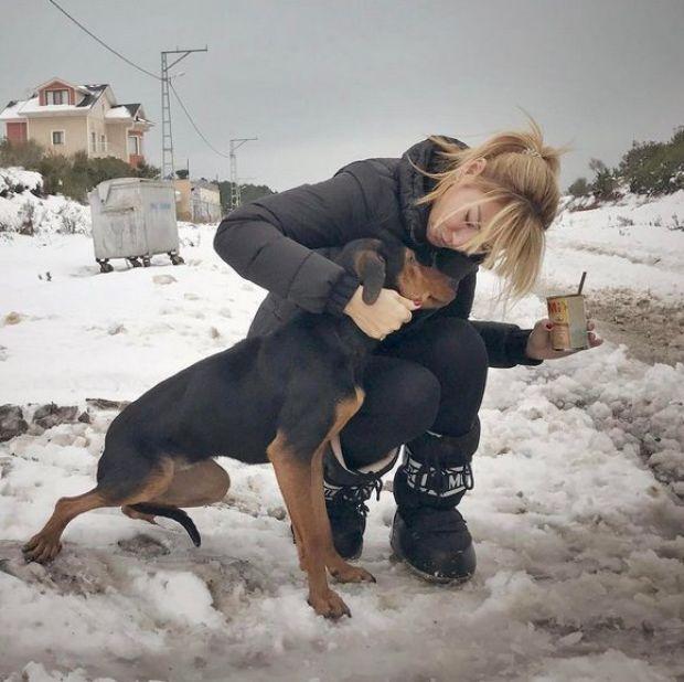 pınar altuğ sokak hayvanlarını unutmadı