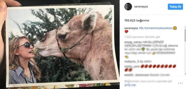 Son dönemin gözde oyuncularından Serenay Sarıkaya'dan develi paylaşım. Serenay Sarıkaya tatil sırasında karşılaştığı deve ile verdiği bu pozu Instagram sayfasından 'Annemin sakladıkları' notuyla paylaştı