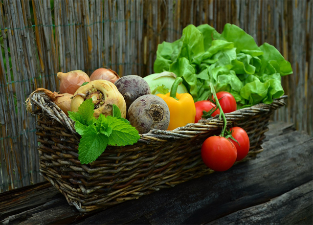 Yeni Beslenme Akımı: Slow Food