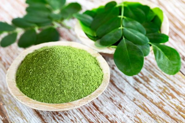 Her gün Moringa içmenin 10 yararlı etkisi