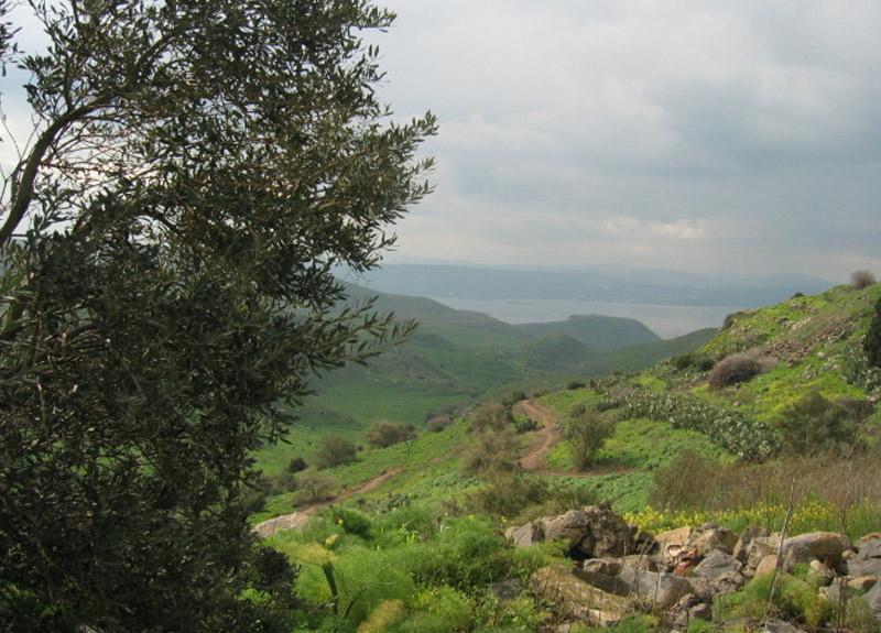 Golan Tepeleri nerede? Golan Tepeleri neden önemli?