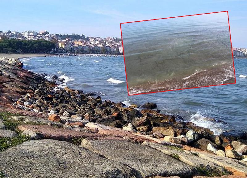 Ordu'da tespit edilen denizdeki kalıntılar araştırılacak