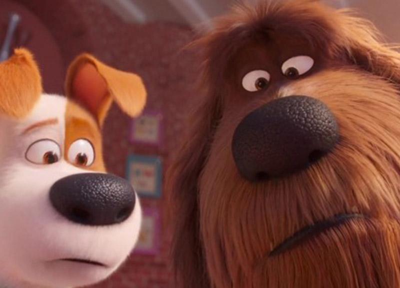 Oscar'a rekor sayıda animasyon filmi başvurusu