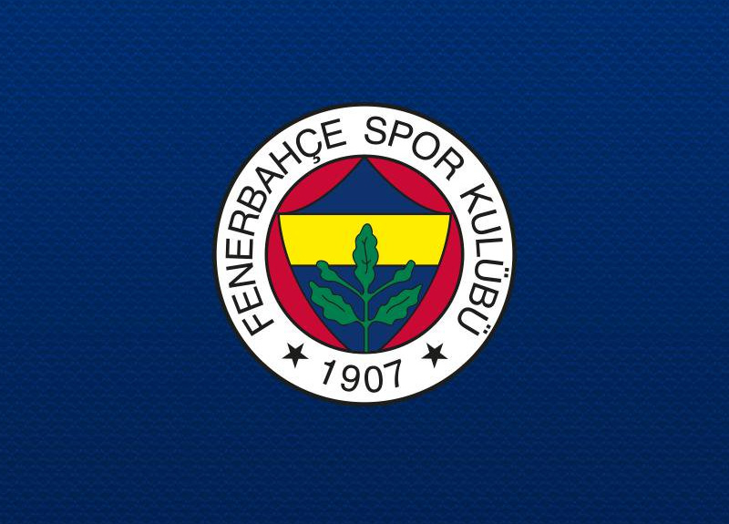 Fenerbahçe'den Hasan Ali Kaldırım ve Miha Zajc'ın sakatlıklarıyla ilgili son dakika açıklaması!