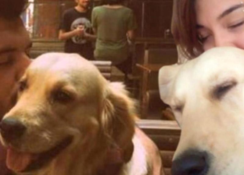Eski sevgililerin 'köpek' davasında karar belli oldu!
