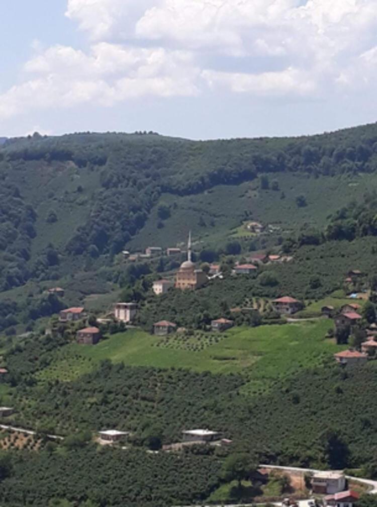Koronavirüs tedbirleri arttırıldı! Muş, Ordu ve Diyarbakır'da karantina başladı!