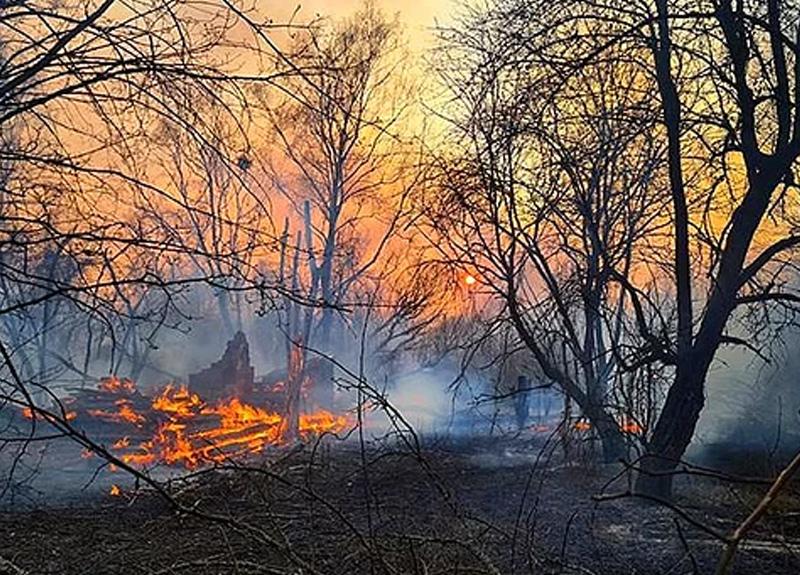 Çernobil yakınlarında başlayan yangın 3 gündür devam ediyor