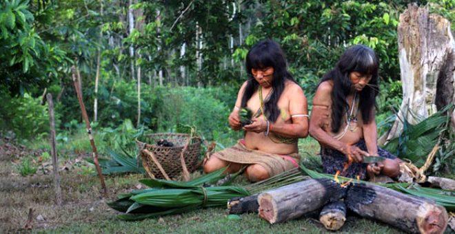 Amazon'un derinliklerindeki gizemli kabile Matses, ruhlarına sahip olmak için ölen yakınlarını yiyor