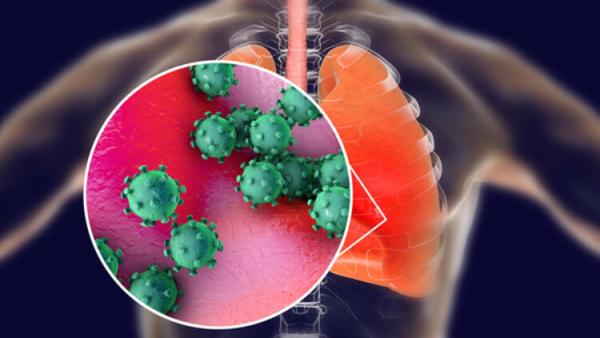 İşin uzmanı açıkladı! Hangi vitaminler bağışıklığı güçlendiriyor?