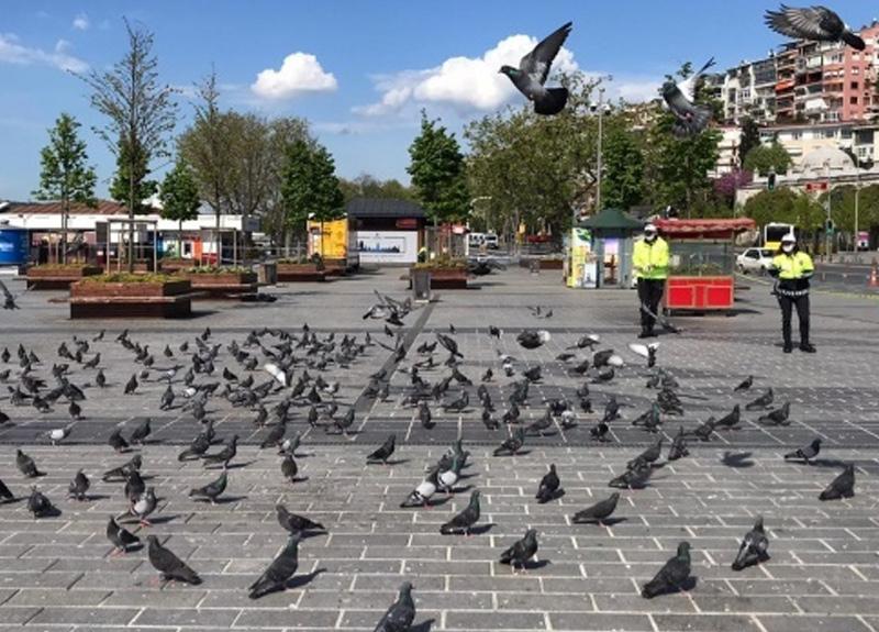 Trafik polisleri sokağa çıkma kısıtlamasında güvercinleri unutmadı