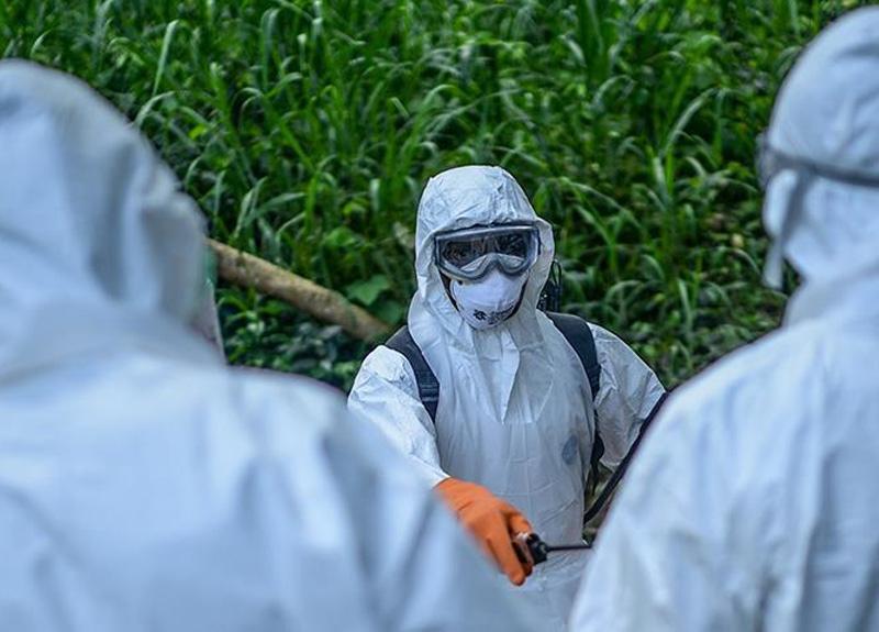 Demokratik Kongo Cumhuriyeti'nde yeni bir ebola salgını olduğu duyuruldu