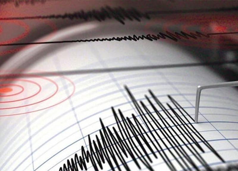 Ege Denizi'nde 4.2 büyüklüğünde korkutan deprem!