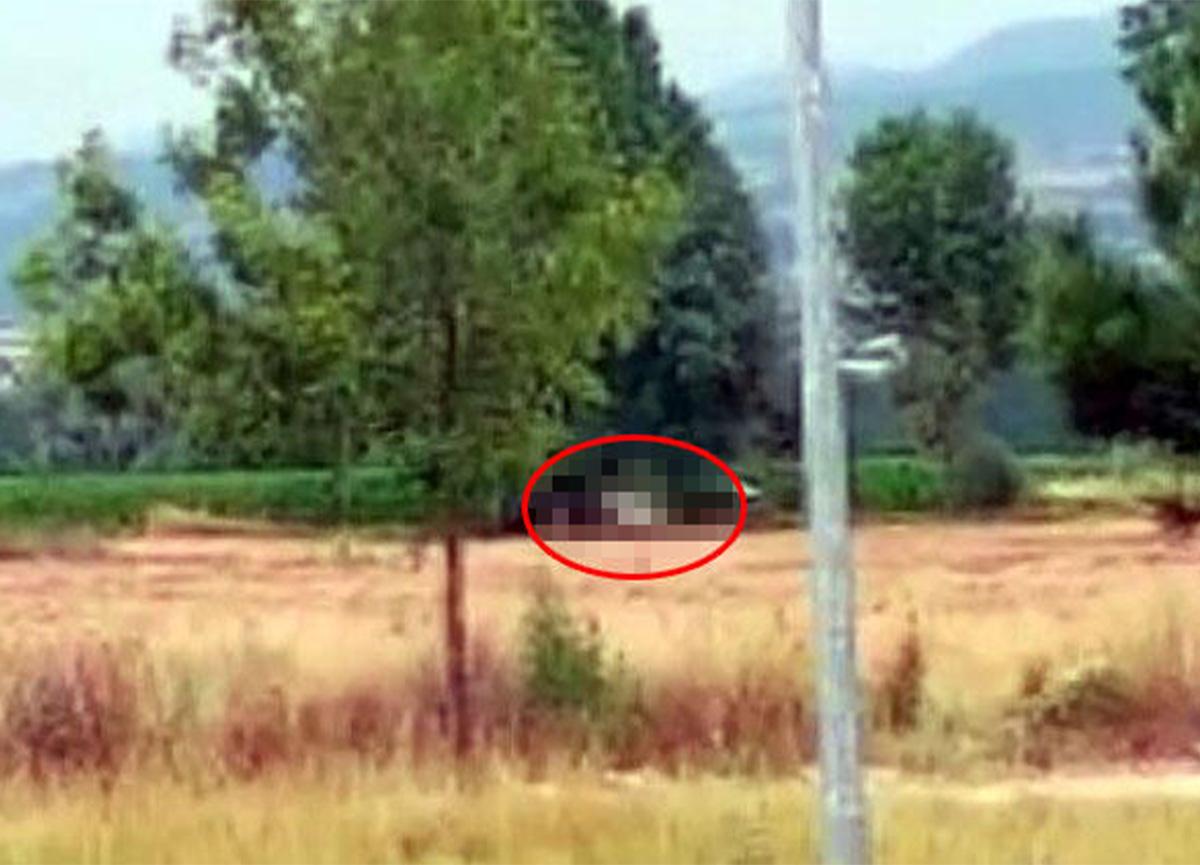 Bolu'da ata cinsel saldırı! Görüntülendiğini fark edince kaçtı!