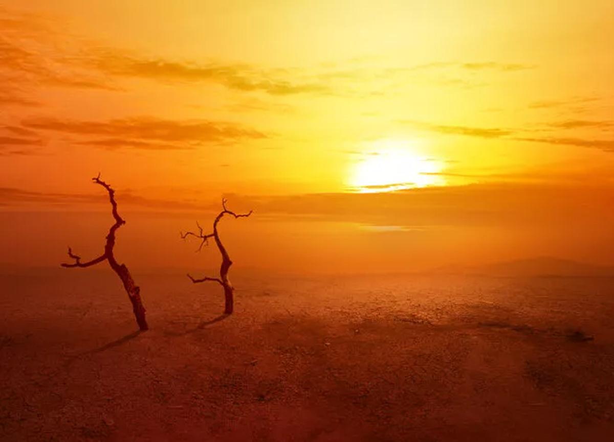 Korkutan açıklama! Küresel ısınma tüm salgınlardan daha fazla öldürecek