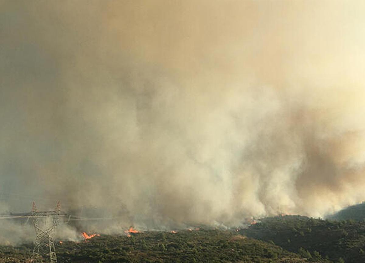 Çeşme'deki yangına havadan müdahale başladı!